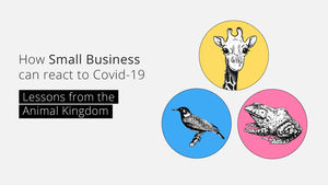 How Small Business can react to Covid-19: Lessons from the Animal Kingdom